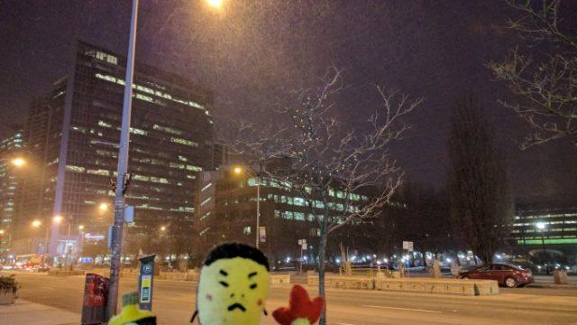 久しぶりにかなりの吹雪
