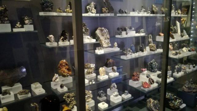 鉱石の展示など種類は本当に様々!