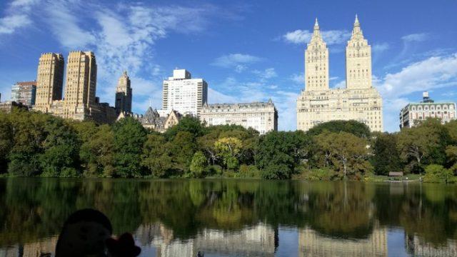 大都会と大公園