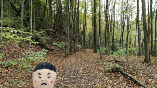 滝を観に行こうといざトレイルへ